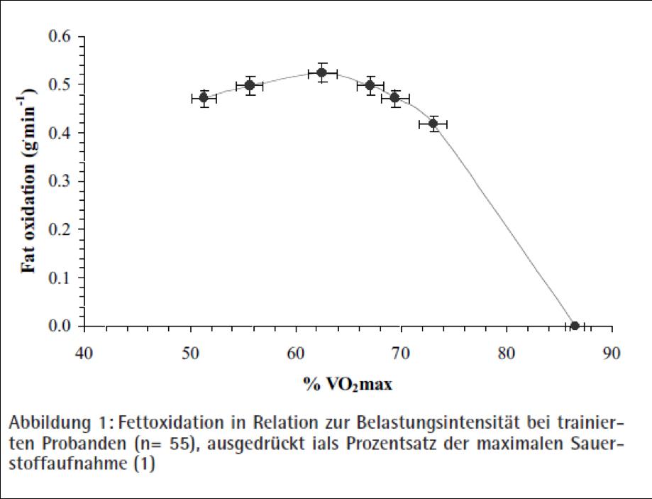 Fettoxidation in Relation zur Belastungsintensität