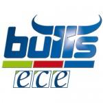 bulls0