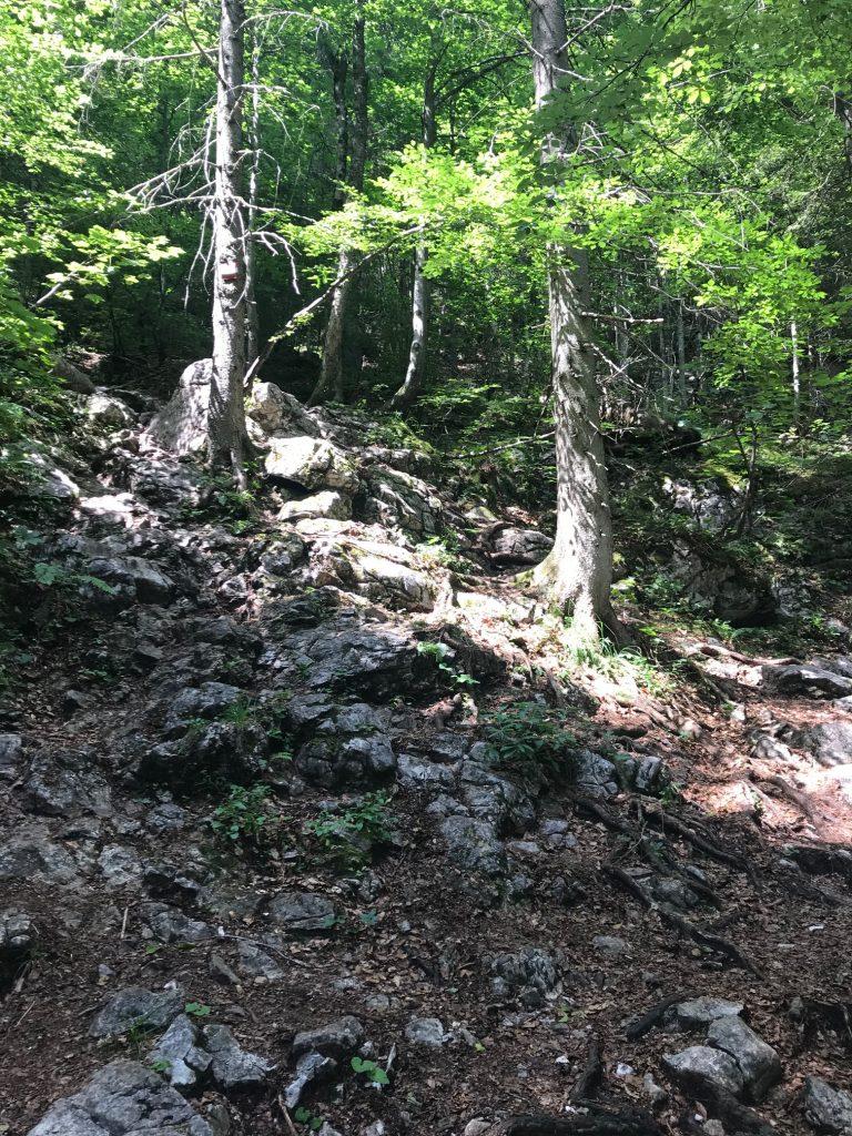 Wanderweg Dümlerhütte