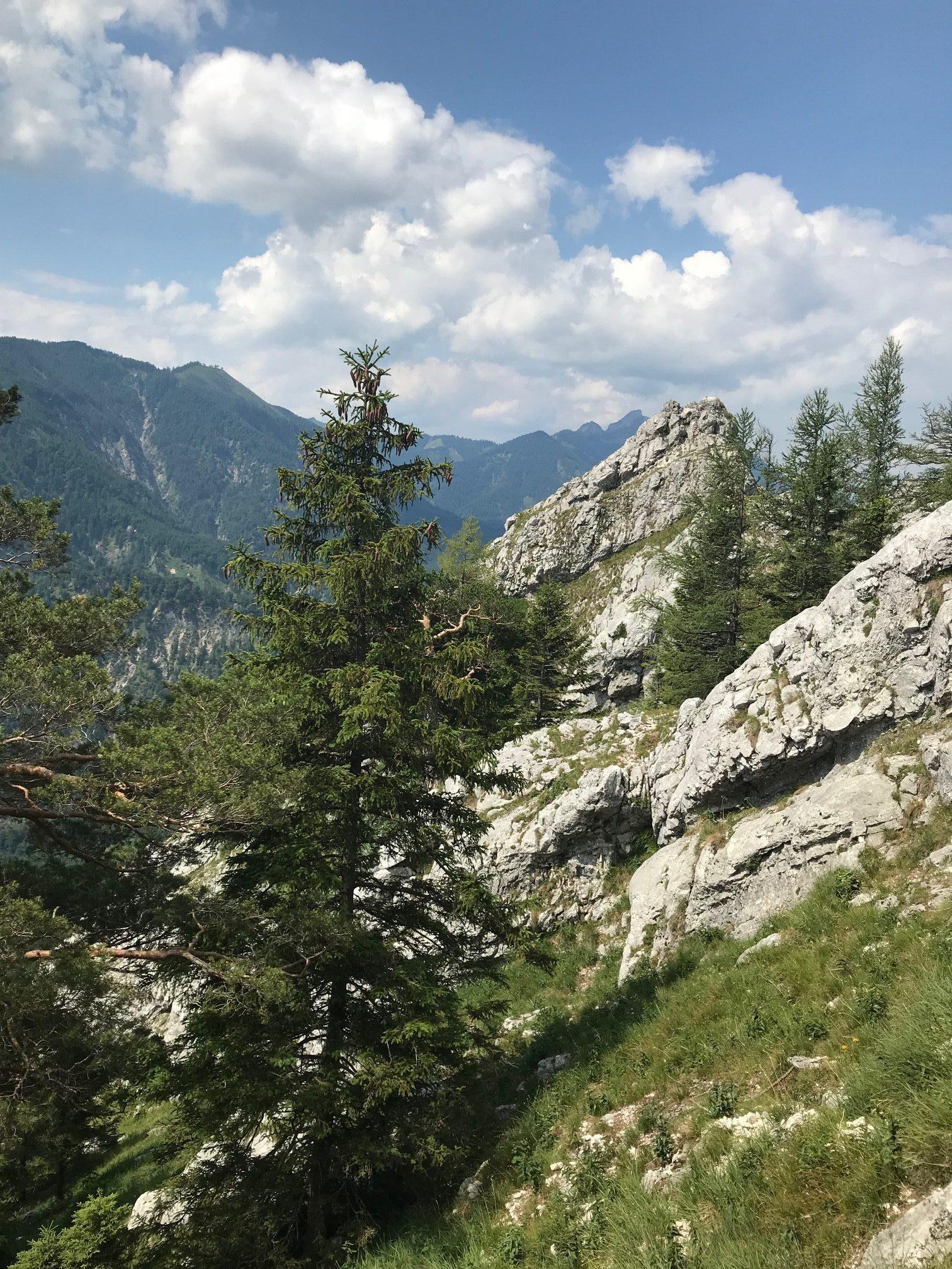 Schoberstein wandern